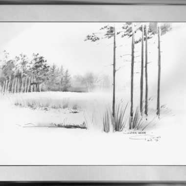 Thumbnail for De Veluwe
